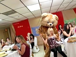 It's Time To Feast And Soiree With The Infamous Dancing Teddy! (db9822)